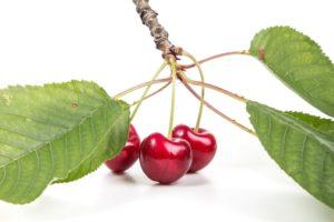 Frutos Rojos-cerezas