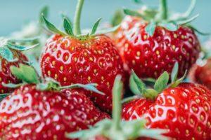 Frutos Rojos-fresas